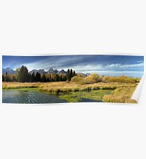 Golden Marsh Grasses, Teton Panorama Poster