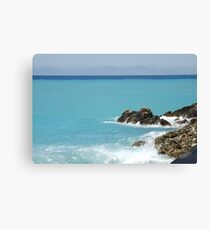 oceanlife Canvas Print