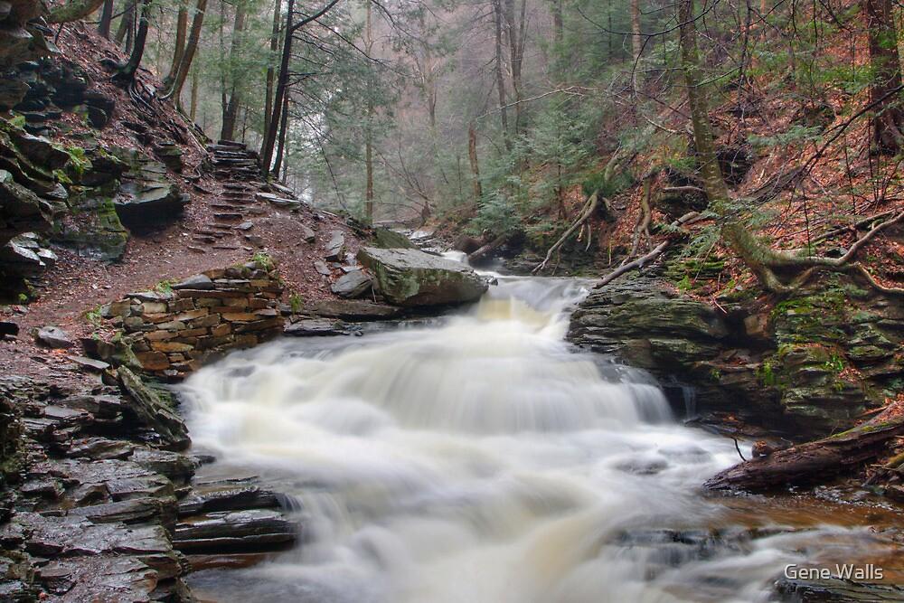 The Trail Past Seneca Falls by Gene Walls