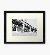 Timmy Johnson Framed Print