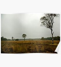 On the big, silent heath... Poster