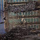 Bird Bath by Gavin Kerslake