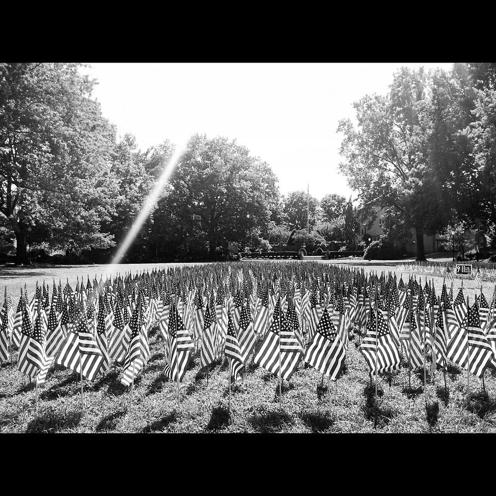 America by Caroline McMaster