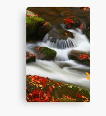CASCADE AND LEAVES Canvas Print