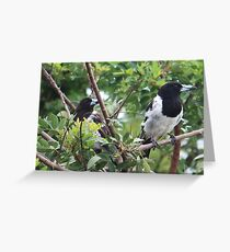 We are watching you! Greeting Card