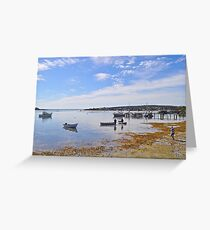 Activity in the Bay Greeting Card