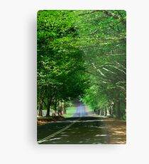 The Avenue Metal Print