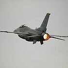 F16 Climbout, Avalon Airshow, Australia 2011 by muz2142