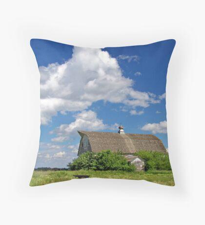 Prairie Past Throw Pillow