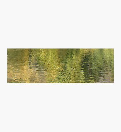 Watercolors Photographic Print