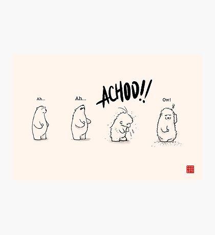 Achoo!! Photographic Print