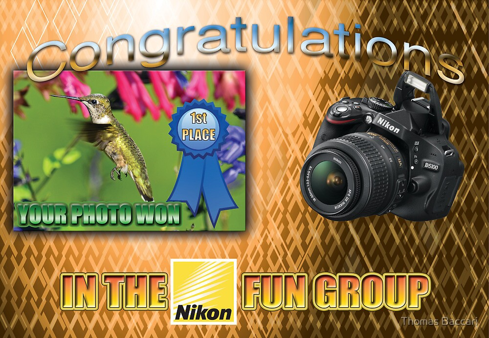 "Banner - won first place in the Nikon Fun Group"" by TJ Baccari Photography"