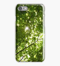 Sun light through tree branches iPhone Case/Skin