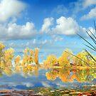Autumn Waters by Igor Zenin