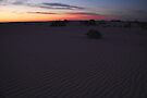 Before sunrise at Lake Mungo, Australia by Carole-Anne