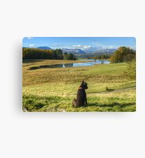Tarn At Wise Een Canvas Print