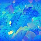 Blue Autumn by JanG