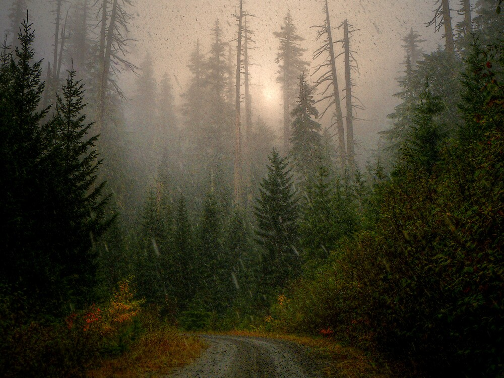 Road To My Dreams by Charles & Patricia   Harkins ~ Picture Oregon