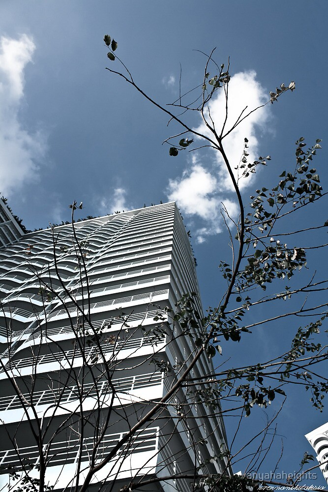 VT7 - Condo with tree by vanyahaheights