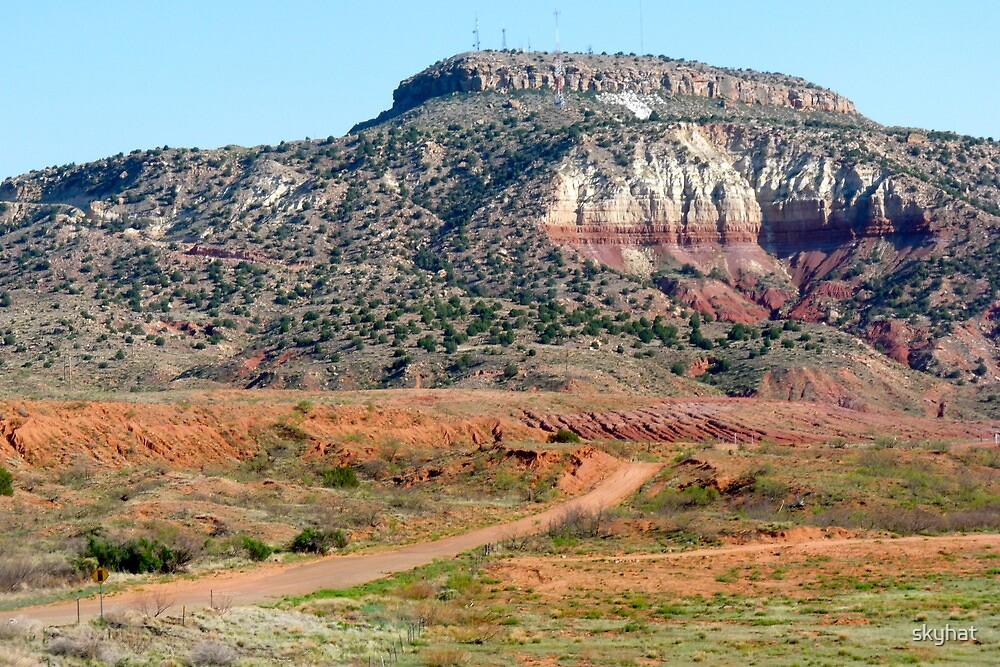 Dirt Road to Tucumcari by skyhat