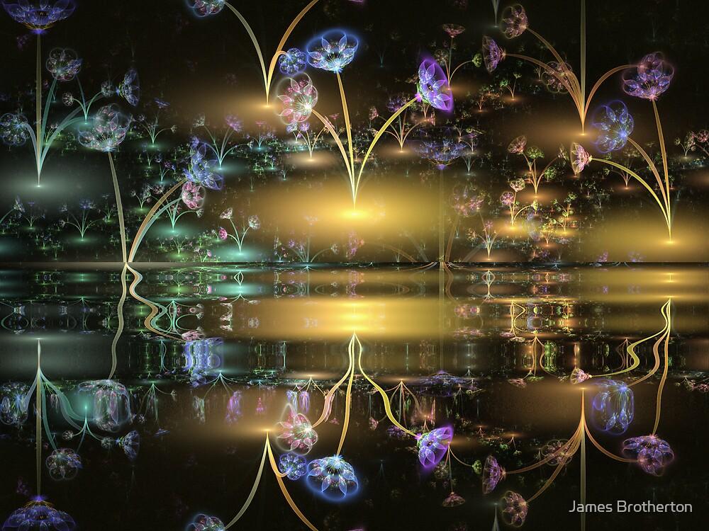 Night Flowers by James Brotherton