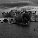 La Seine by Aleksandar Topalovic