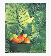 Tropical Fruit Photographic Print