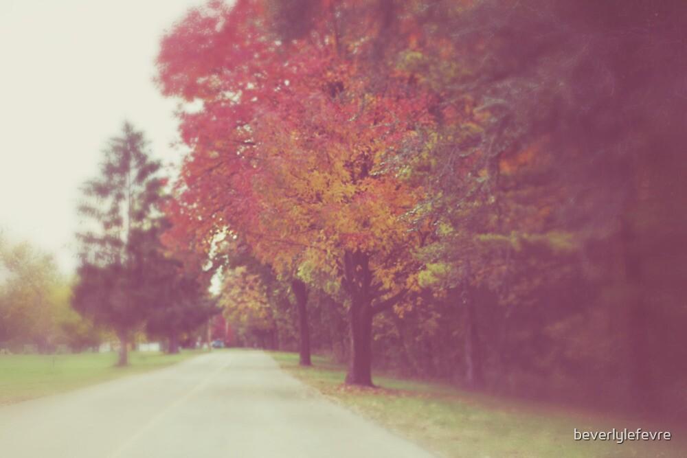 an autumn drive by beverlylefevre