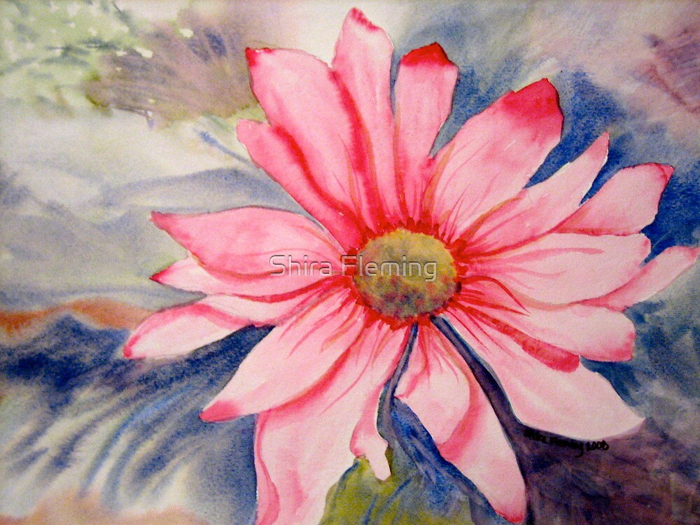 Pink Flower by Shira Fleming