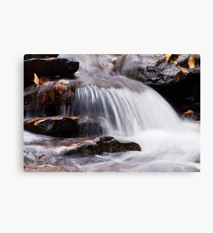 Rushing Creek Canvas Print