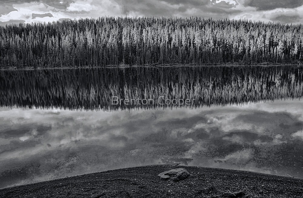 Grassy Lake Reflection by Brenton Cooper