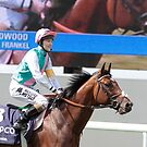 Frankel On Stage and Screen  by lulu kyriacou