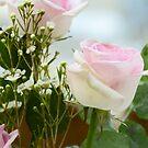 Roses 1 by James Stevens