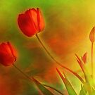 """Tulips (from """"Painted flowers"""" collection) by EvaMarIza"""