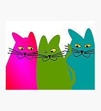 "Whimsical Cats ""He Did it!"" Photographic Print"