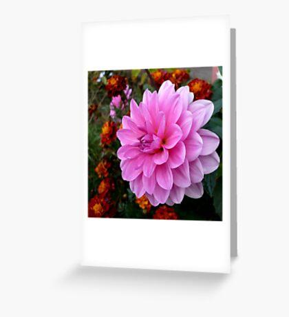 Pink and Orange Greeting Card