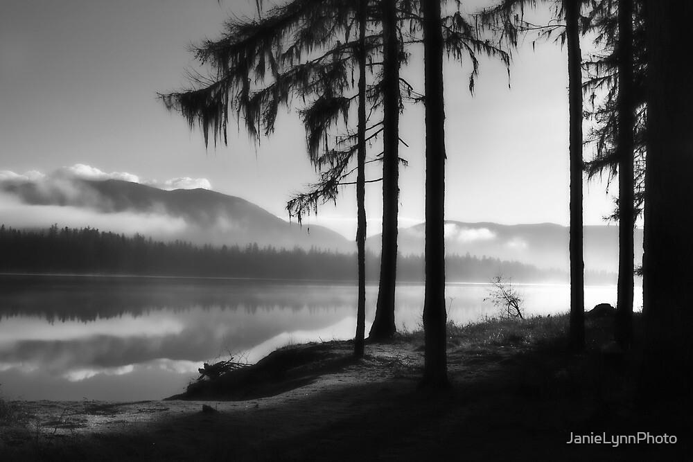 Pristine Serenity In Autumn by Janie Lynn Johnson