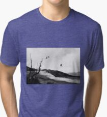 tree swallows in yellowstone Tri-blend T-Shirt
