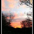 Autumn Twilight by weallareone