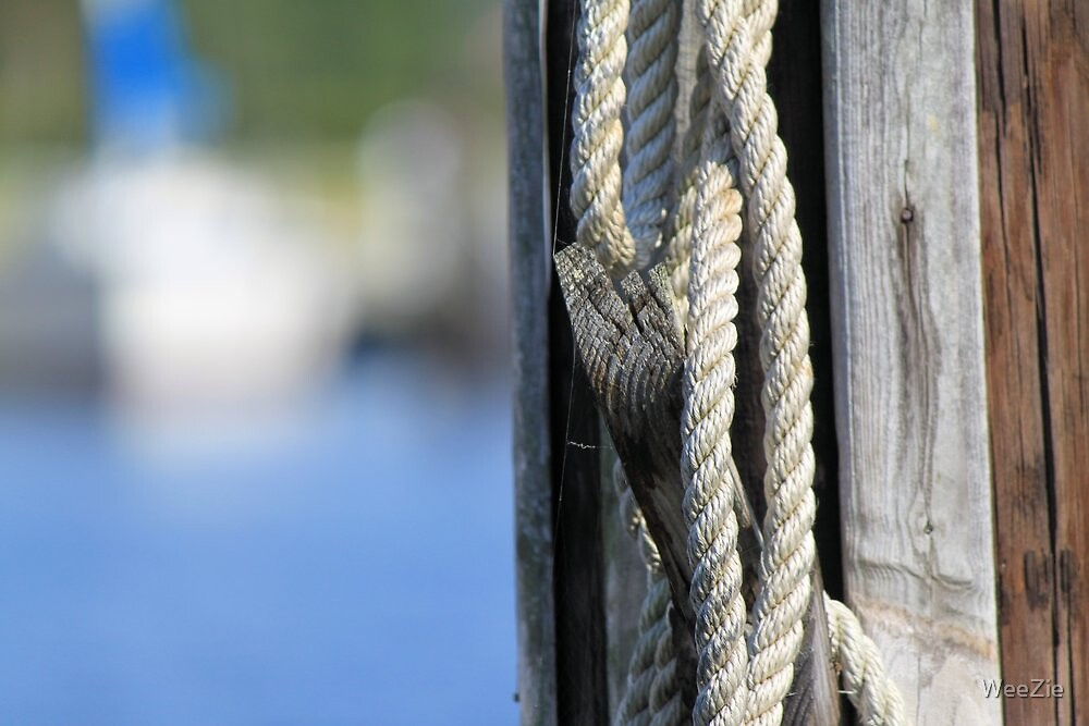 A Bit Of Rope by WeeZie