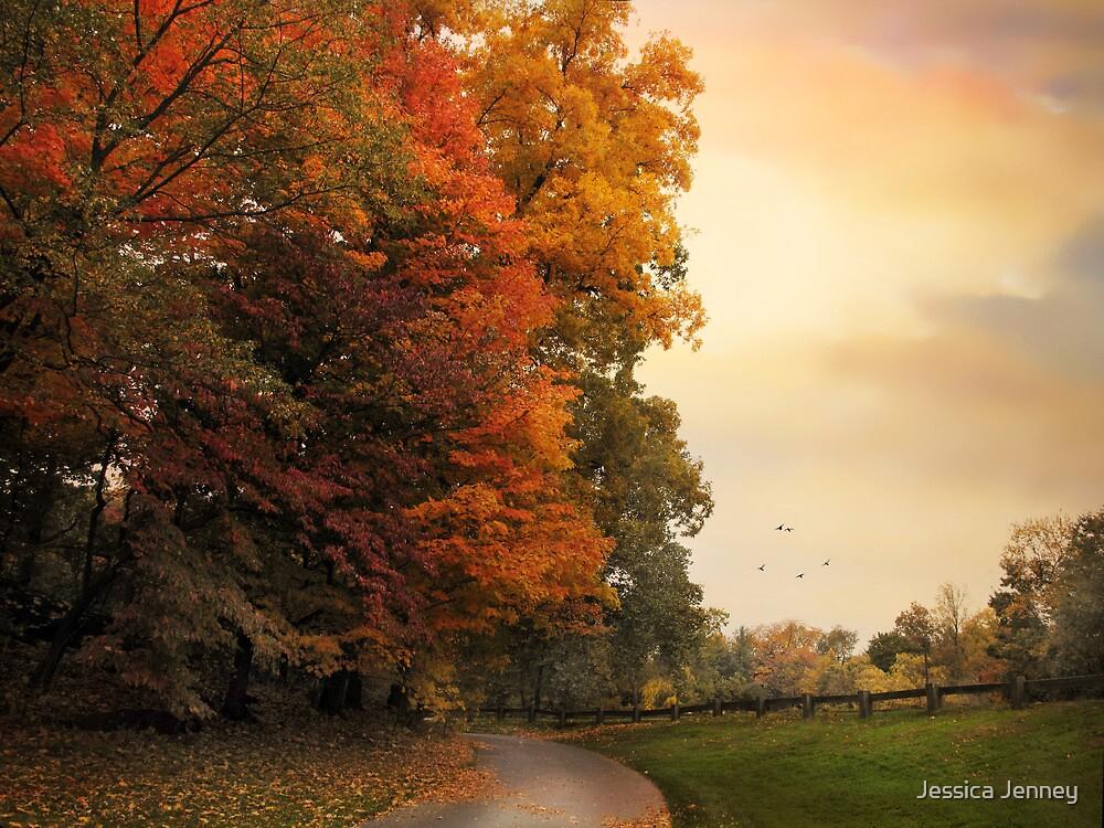 Autumn Trail  by Jessica Jenney