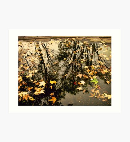 Fall In A Puddle Art Print