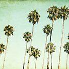 Palm Trees by Mareike Böhmer