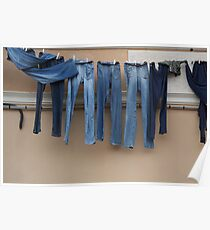 Jeans on a washing line Poster