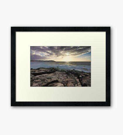 Crocodile Rock Framed Print