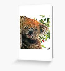 Otways Koala Greeting Card