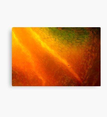 burning inside Canvas Print