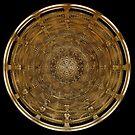 Ancient Shield by Vanessa Barklay