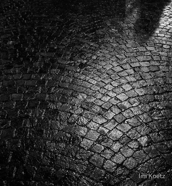 The Shadow......... by Imi Koetz