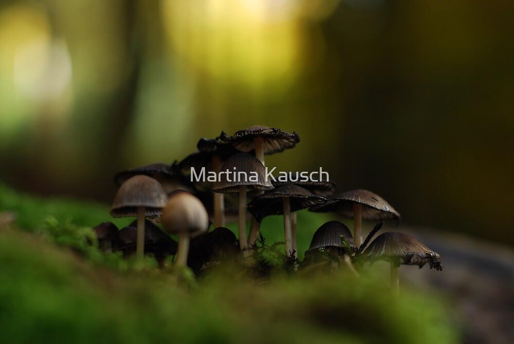 Mushrooms  by Martina Kausch